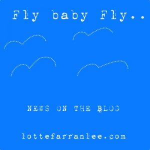 fly-baby-fly